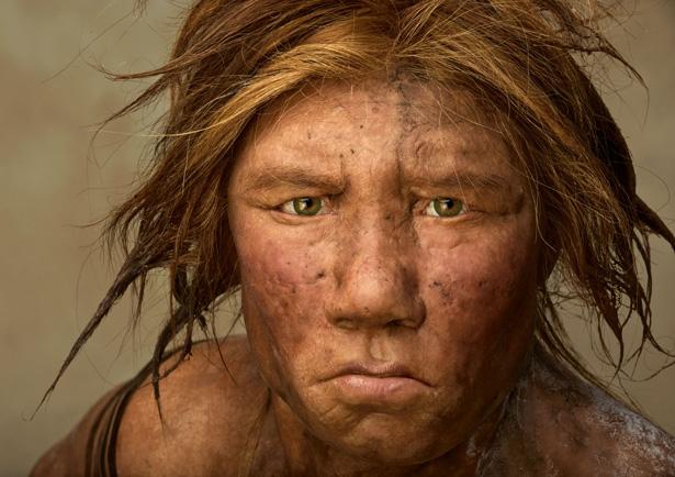 http://scienceandbelief.files.wordpress.com/2010/07/neanderthal-615.jpg