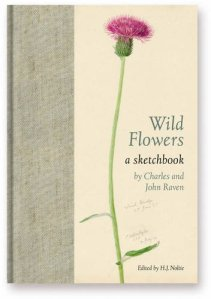 Wild flowers scketchbook Charles raven