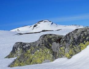 Winter landscape Telemark by Randi Hausken. Flickr. (CC BY-SA 2.0)