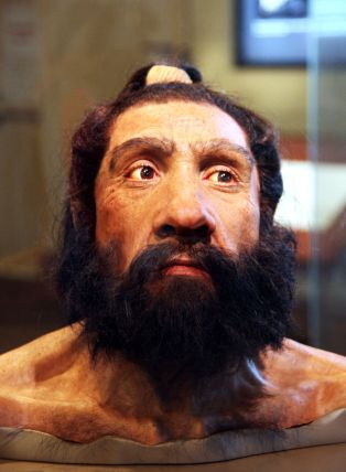 Homo neanderthalensis By Tim Evanson [CC BY-SA 2.0], via Wikimedia Commons