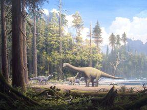 Europasaurus holgeri Scene 2 By Gerhard Boeggemann (File was sent by Gerhard Boeggemann. Gallery) [CC BY-SA 2.5], via Wikimedia Commons