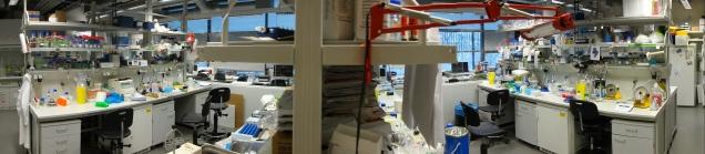 Biochemistry_laboratory_MPI-CBG-panorama