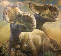Pachyrhinosaurus_Perotorum_Alaska_copyright_web