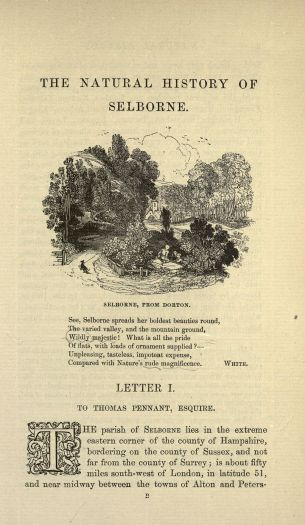 The natural history and antiquities of Selborne By White, Gilbert [Public domain], via Wikimedia Commons