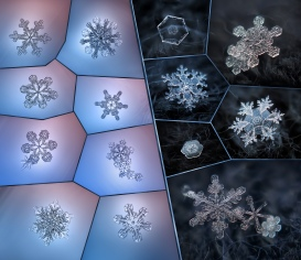 Snowflake macro: collage 1 by Alexey Kljatov. Flickr. (CC BY-NC 2.0)