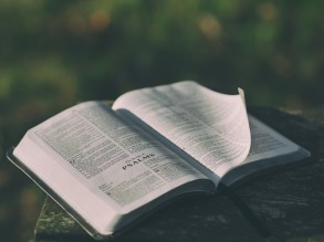bible-1846174_1920