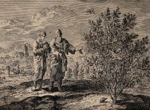 Christ and mustard seed etching by Wellcome Library, London (CC BY 4.0)