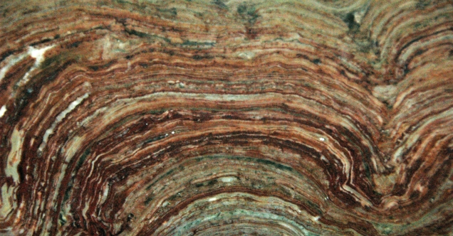 stromatolite-fossil-james-st-john-flickr-ccc2.jpg