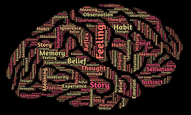 mind brain-544404_640 John Hain pixabay copy