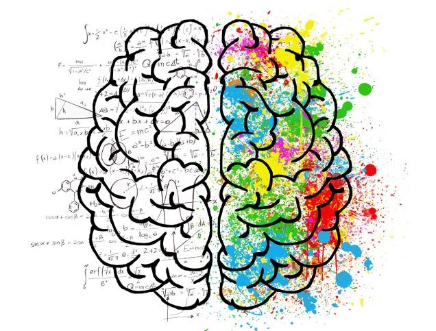 brain-2062057_1280ElisaRiva pixabay copy